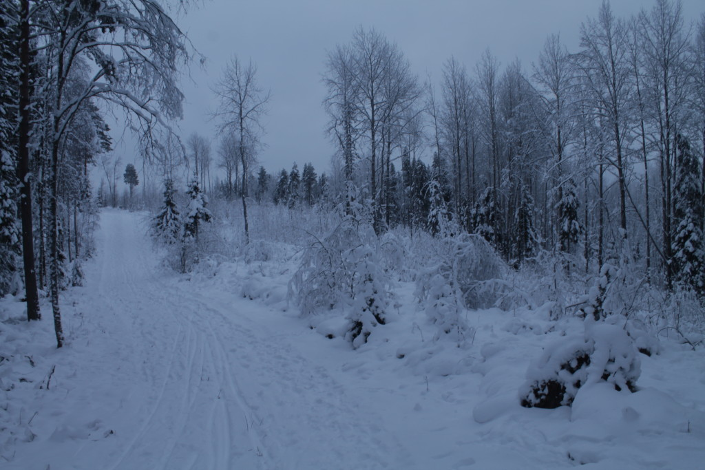 Raahe Winter 43